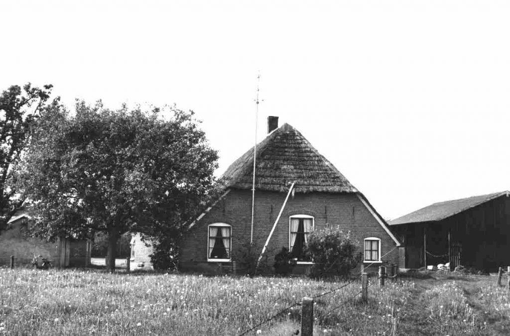 croddendijk-3-grondgeese-li-265